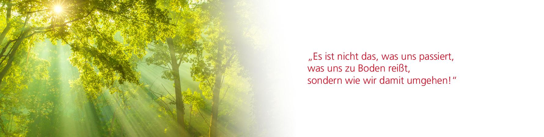 Slider_Sonnenstrahl_Training_V2_